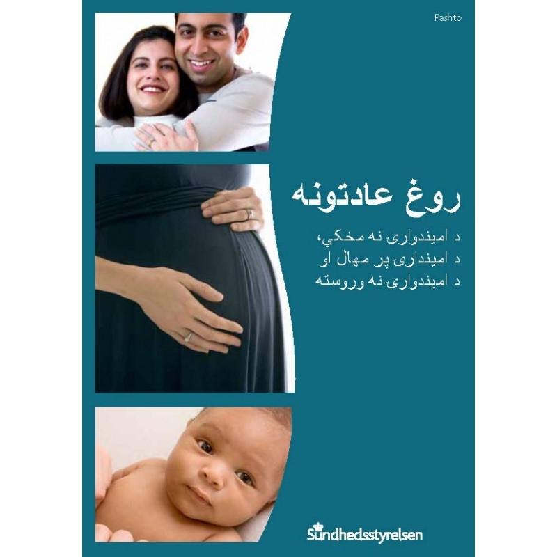 Sunde vaner - før, under og efter graviditet Pashto (E-bog)